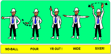 Umpire image.png